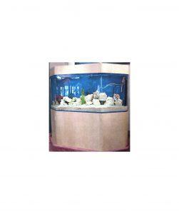 Морской-аквариум-шестиугольный-плоской-спины-CFB